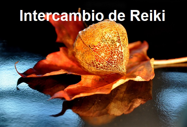 Intercambio Reiki Meditación Octubre