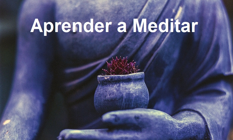 Aprender Meditar Enero 2020